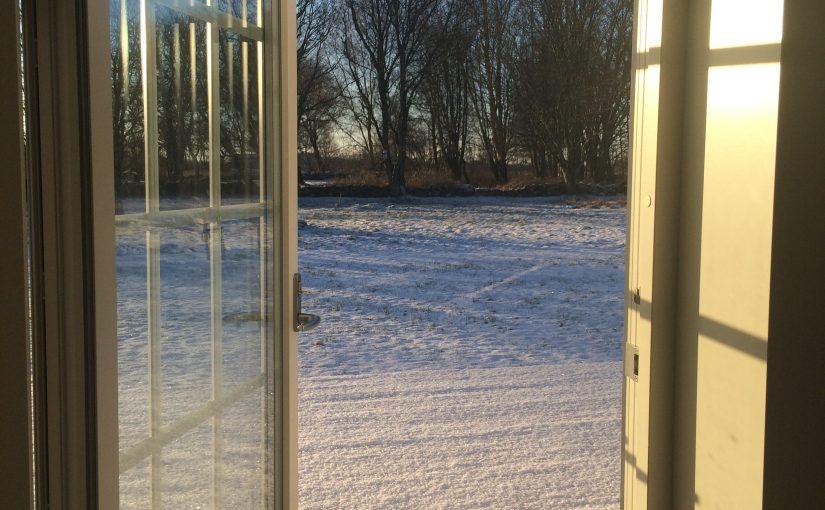 Vinterns bleka ljus får växterna att börja vakna